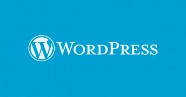 WordPress 4.6 Beta 1 Duyuruldu