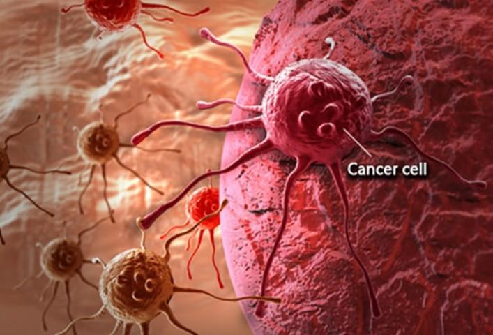 Kanser Hücreleri Kendi Kendini Yok Edebiliyor